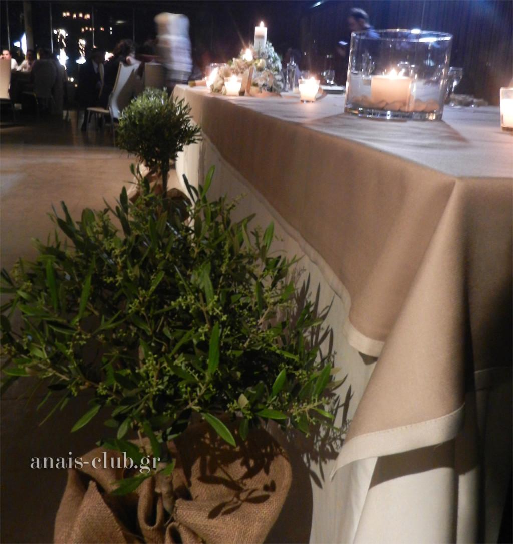 Τα δεντράκια σε γλάστρες, που είναι ντυμένες με λινάτσα, διακοσμούν τον χώρο μπροστά από το νυφικό τραπέζι